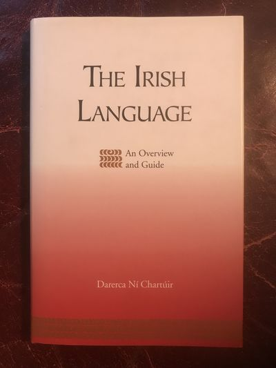 Image for The Irish Language An Overview and Guide Hardcover